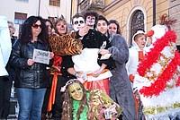 Foto Carnevale in piazza 2013 Carnevale_Bedonia_2013_0687