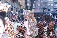 Foto Carnevale in piazza 2013 Carnevale_Bedonia_2013_0721