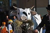 Foto Carnevale in piazza 2015 Carnevale_Bedonia_2015_051
