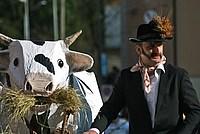 Foto Carnevale in piazza 2015 Carnevale_Bedonia_2015_054