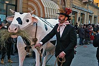 Foto Carnevale in piazza 2015 Carnevale_Bedonia_2015_539