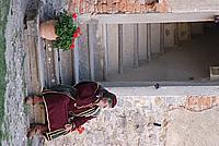 Foto Castello di Bardi 2008 Bardi_001