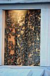 Foto Cioccolataro 2007 CioccolaTaro_2007_040