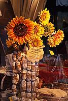 Foto Cioccolataro 2010 Cioccolataro_2010_051