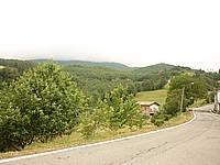Foto Compiano - Strela Strela_003