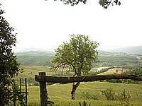 Foto Compiano - Strela Strela_068