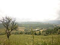 Foto Compiano - Strela Strela_070