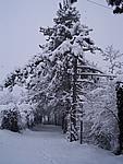 Foto Compiano 2004 Compiano sotto la neve 2005 07