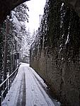 Foto Compiano 2004 Compiano sotto la neve 2005 16