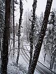 Foto Compiano 2004 Compiano sotto la neve 2005 17