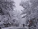 Foto Compiano 2004 Compiano sotto la neve 2005 20