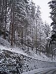 Foto Compiano 2004 Compiano sotto la neve 2005 22