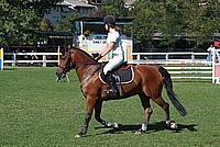 Foto Equitazione 2008 - Borgotaro Equitazione_017