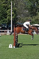 Foto Equitazione 2008 - Borgotaro Equitazione_019