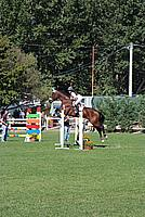 Foto Equitazione 2008 - Borgotaro Equitazione_037
