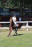 Foto Equitazione 2008 - Borgotaro Equitazione_042