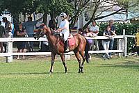 Foto Equitazione 2008 Equitazione_004