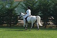 Foto Equitazione 2008 Equitazione_010