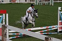 Foto Equitazione 2008 Equitazione_011
