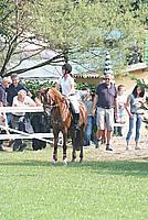 Foto Equitazione 2008 Equitazione_015