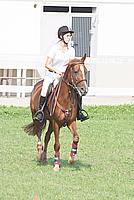 Foto Equitazione 2008 Equitazione_030