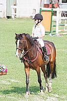 Foto Equitazione 2008 Equitazione_038