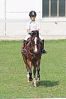 Foto Equitazione 2008 Equitazione_041