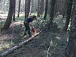 Foto Esercitazione prevenzione incendi 2007 Prevenzione incendi 2007 40
