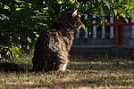 Foto Estate 2007 Estate_2007_008