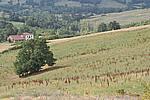 Foto Estate 2007 Estate_2007_020