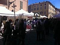 Foto Festa dei Fiori 2013 - Parma Parma_Fiori_2013_004