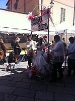 Foto Festa dei Fiori 2013 - Parma Parma_Fiori_2013_007