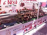 Foto Festa dei Fiori 2013 - Parma Parma_Fiori_2013_016