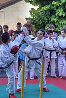 Foto Festa dello Sport 2011 - Bedonia Festa_Sport_2011_046