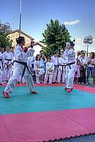 Foto Festa dello Sport 2011 - Bedonia Festa_Sport_2011_048