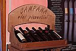 Foto Festival dei Sapori 2008 Festival_Sapori_2008_169
