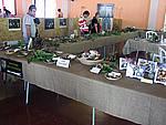Foto Fiera del Fungo di Albareto 2007 Fungo_di_Albareto_2006_005