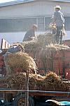Foto Fiera del Fungo di Albareto 2007 Fungo_di_Albareto_2006_061