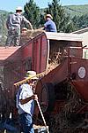 Foto Fiera del Fungo di Albareto 2007 Fungo_di_Albareto_2006_074