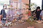 Foto Fiera del Fungo di Albareto 2008 Fiera_Fungo_Albareto_2008_021