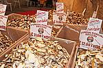 Foto Fiera del Fungo di Albareto 2008 Fiera_Fungo_Albareto_2008_030
