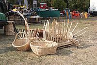 Foto Fiera del Fungo di Albareto 2009 Fungo_Albareto_09_018