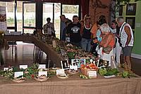 Foto Fiera del Fungo di Albareto 2009 Fungo_Albareto_09_033