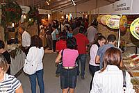 Foto Fiera del Fungo di Albareto 2009 Fungo_Albareto_09_037