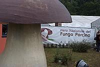 Foto Fiera del Fungo di Albareto 2009 Fungo_Albareto_09_083