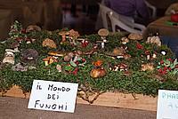Foto Fiera del Fungo di Albareto 2009 Fungo_Albareto_09_086