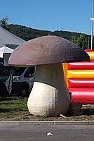 Foto Fiera del Fungo di Albareto 2010 Fungo_Albareto_2010_035