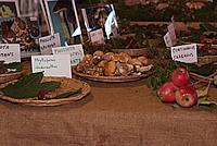 Foto Fiera del Fungo di Albareto 2010 Fungo_Albareto_2010_036