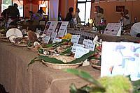 Foto Fiera del Fungo di Albareto 2010 Fungo_Albareto_2010_040