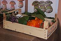 Foto Fiera del Fungo di Albareto 2010 Fungo_Albareto_2010_045